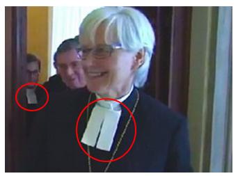 2) Destaca pechera luterana