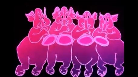 elefantes.rosas