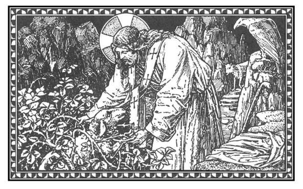 tercer-domingo-despues-de-pentecostes