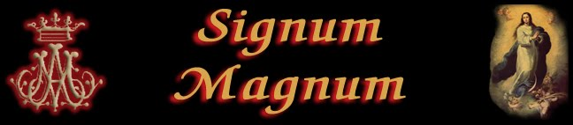 SIGNUM MAGNUM BLOG
